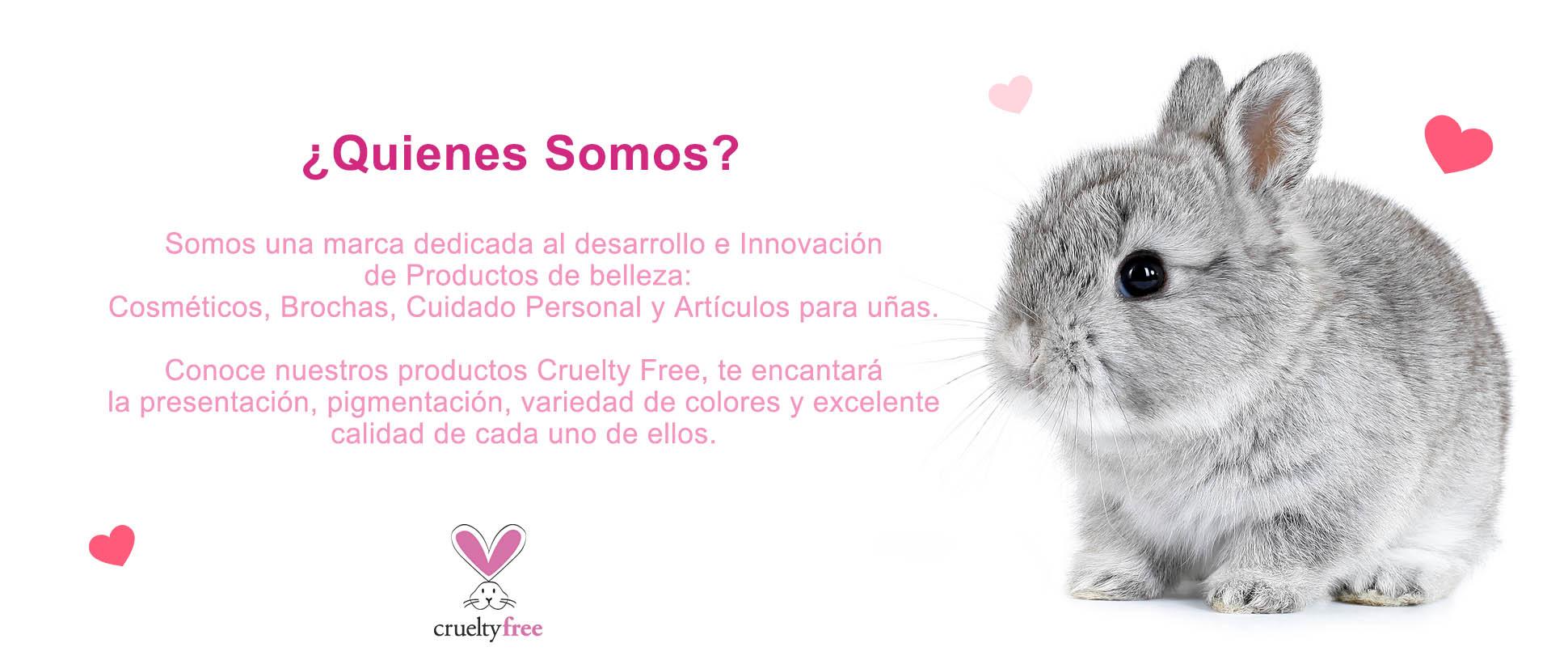 Amamos a los conejitos 🐰